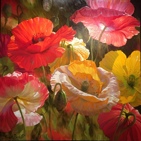 "Poppy Baroque 48x48"" original oil on canvas by Leon Roulette of Iclandic Poppies aglow in sunlight."