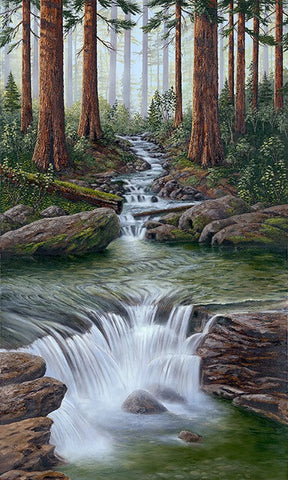 Redwood Creek limited edition canvas giclee print by Patrick O'Rourke
