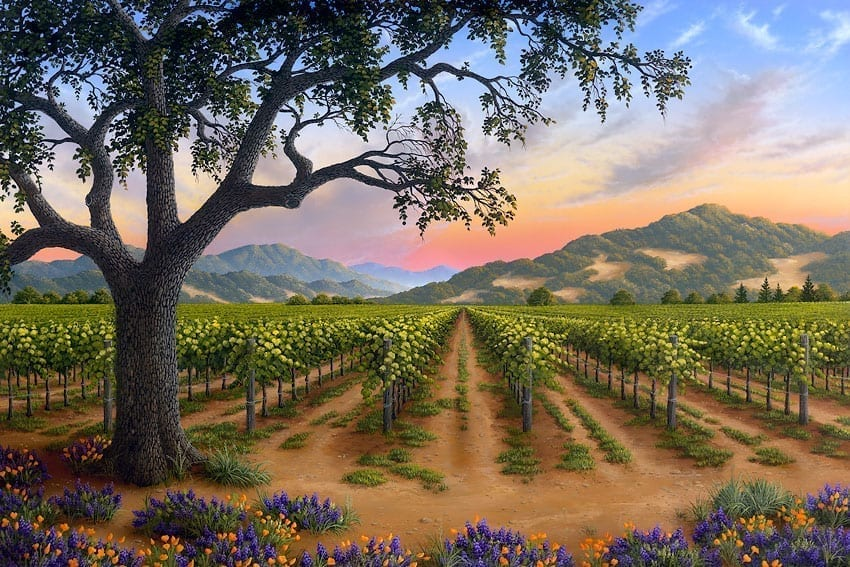 Spring Bouquet in the Napa Valley by Patrick O'Rourke