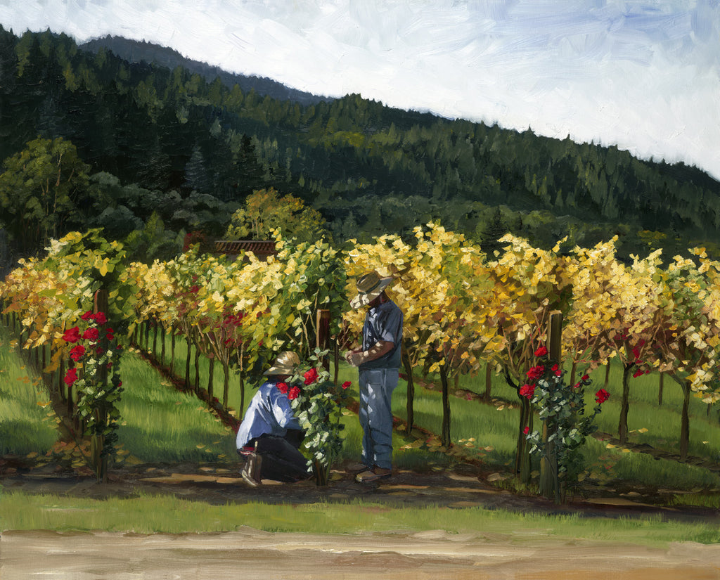 Tending the Vines - canvas print