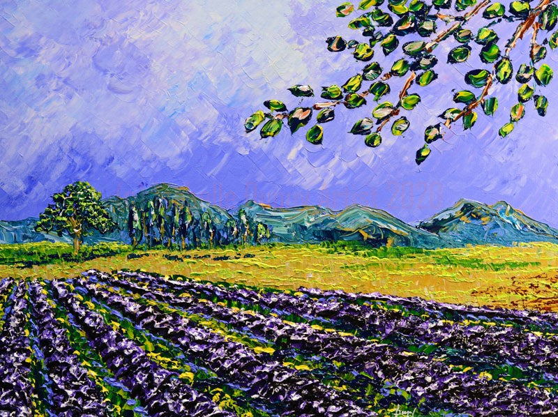 "Summer Lavender of Beautiful Fields 30 x 40"" original by Isabelle Dupuy"