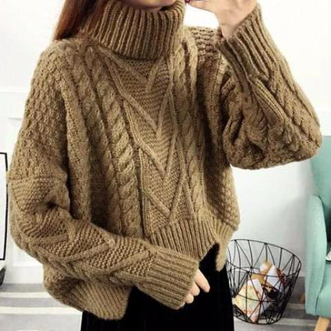 ALIZA Turtleneck Braided Crop Sweater