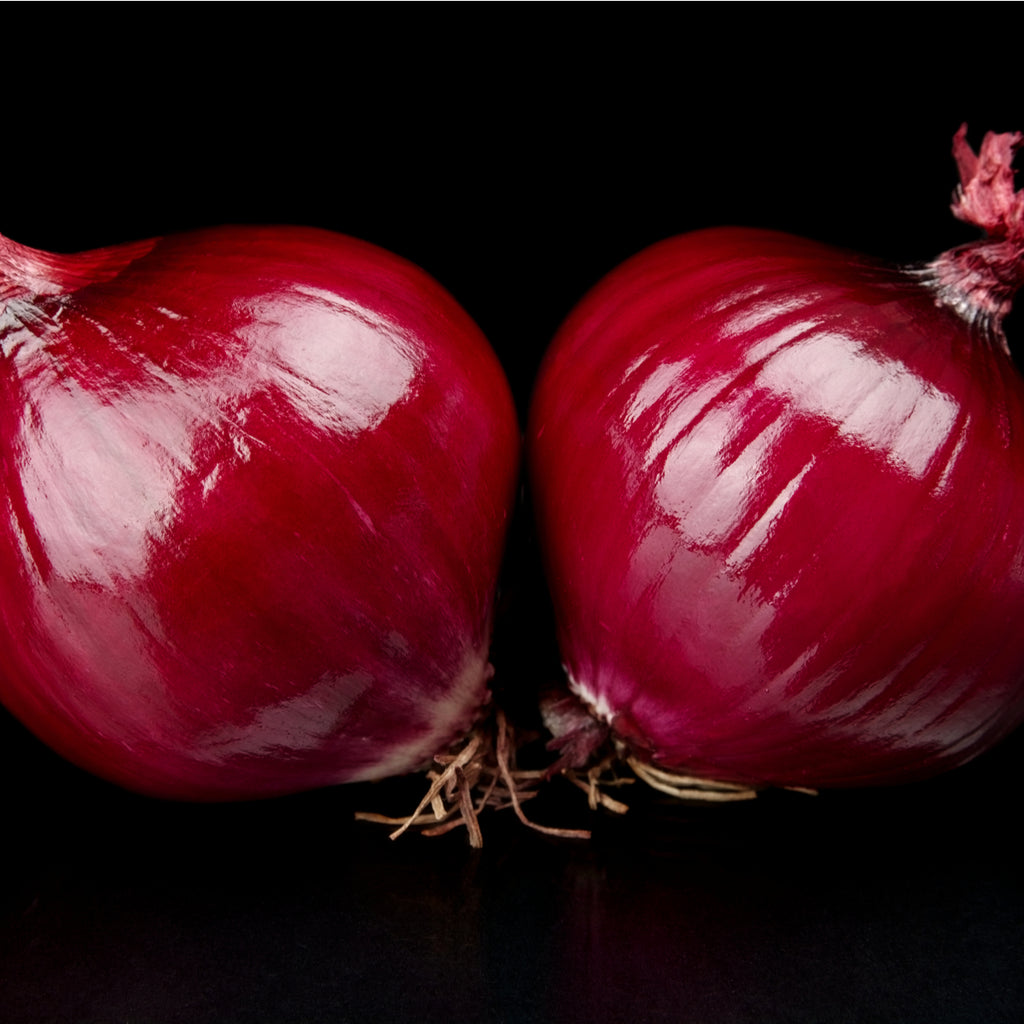 Large Red Onion ea