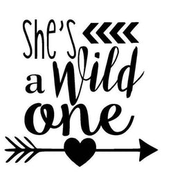 She's a Wild One Arrow Vinyl Car Decal Bumper Window Sticker Any Color Multiple Sizes Jenuine Crafts