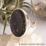 Load image into Gallery viewer, Turtella Jasper Ring