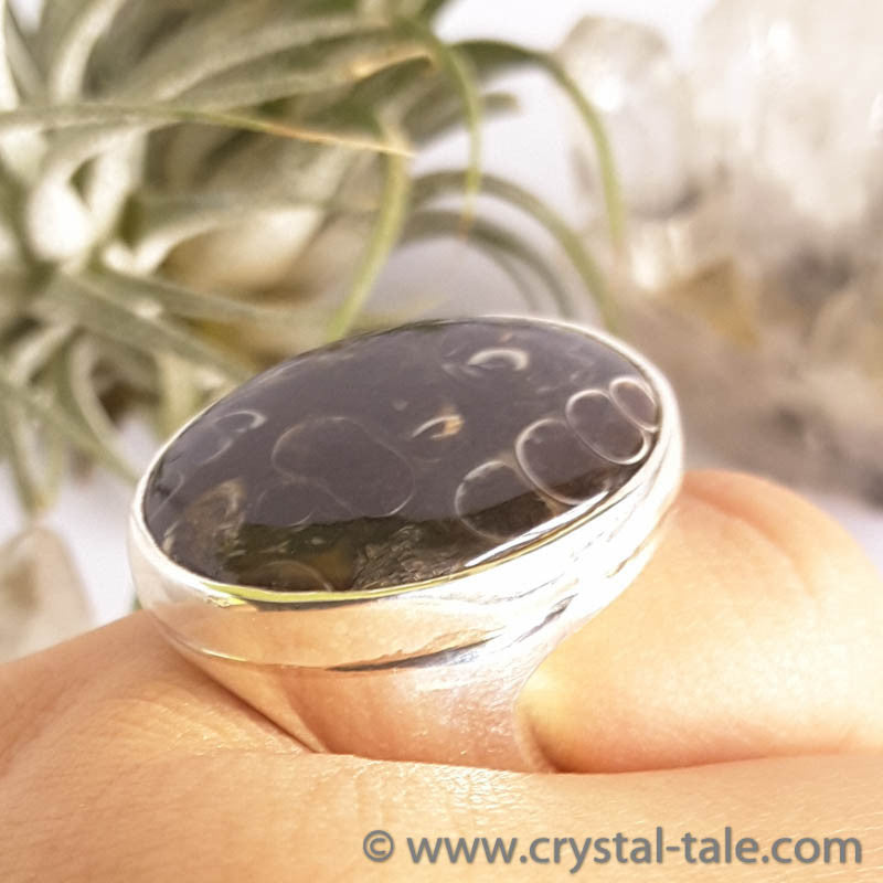 Turtella Jasper Ring