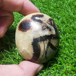 Load image into Gallery viewer, Septarian Palm Stone