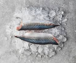 Fresh Mackerel Fillets