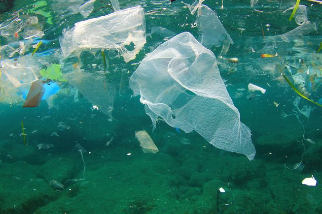 Top 5 Tips to Eliminate Plastic