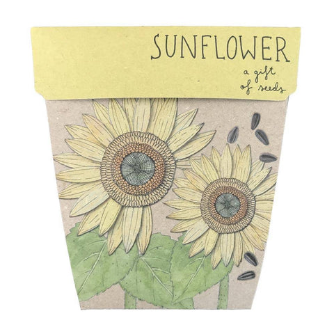Sow 'n Sow A Gift Of Seeds - Sunflower