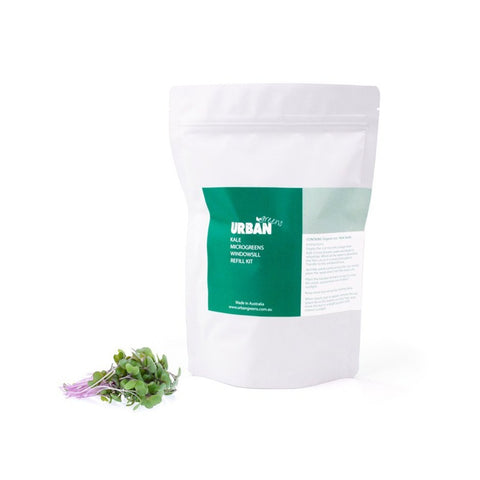 Urban Greens - Windowsill Seed and Soil Refill - Kale