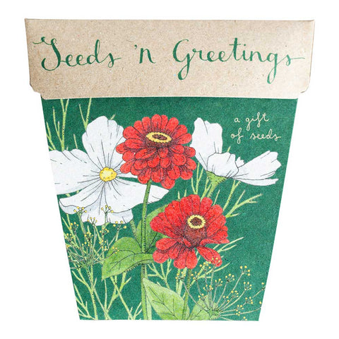 Sow 'n Sow - A Gift Of Seeds - Seeds 'n Greetings