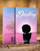 Destiny, by Vumile Zulu, romance novel, African novel