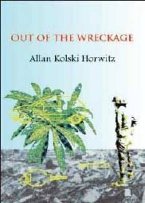 Out of the Wreckage, by Allan Kolski Horwitz