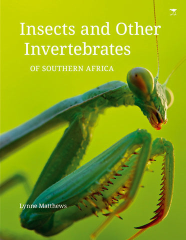 Insects and Other Vertebrates