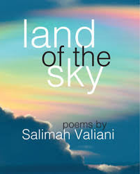 Land of the Sky<br> by Salimah Valiani