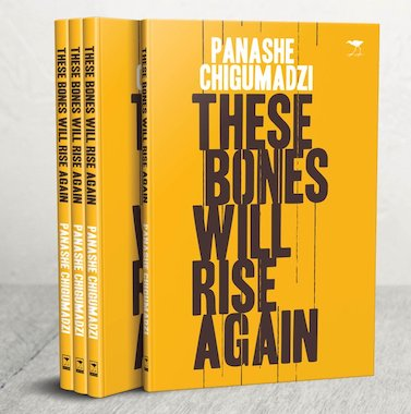 These Bones Will Rise Again by  Panashe Chigumadzi