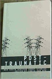Post-Traumatic: New South African Short Stories by Chris [editor] Van Wyk (Author)