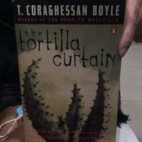 The Tortilla Curtain , by T.C. Boyle (used)