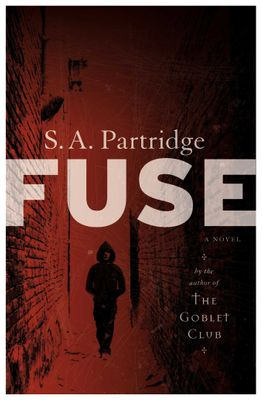 Fuse, by Sally-Ann Partridge
