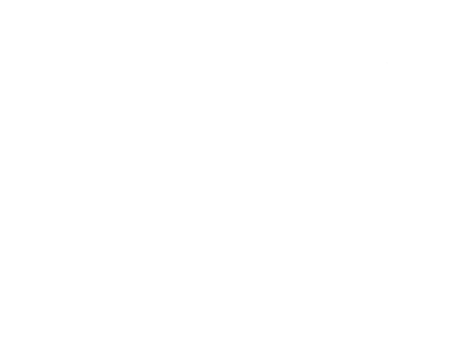 Bridge Books