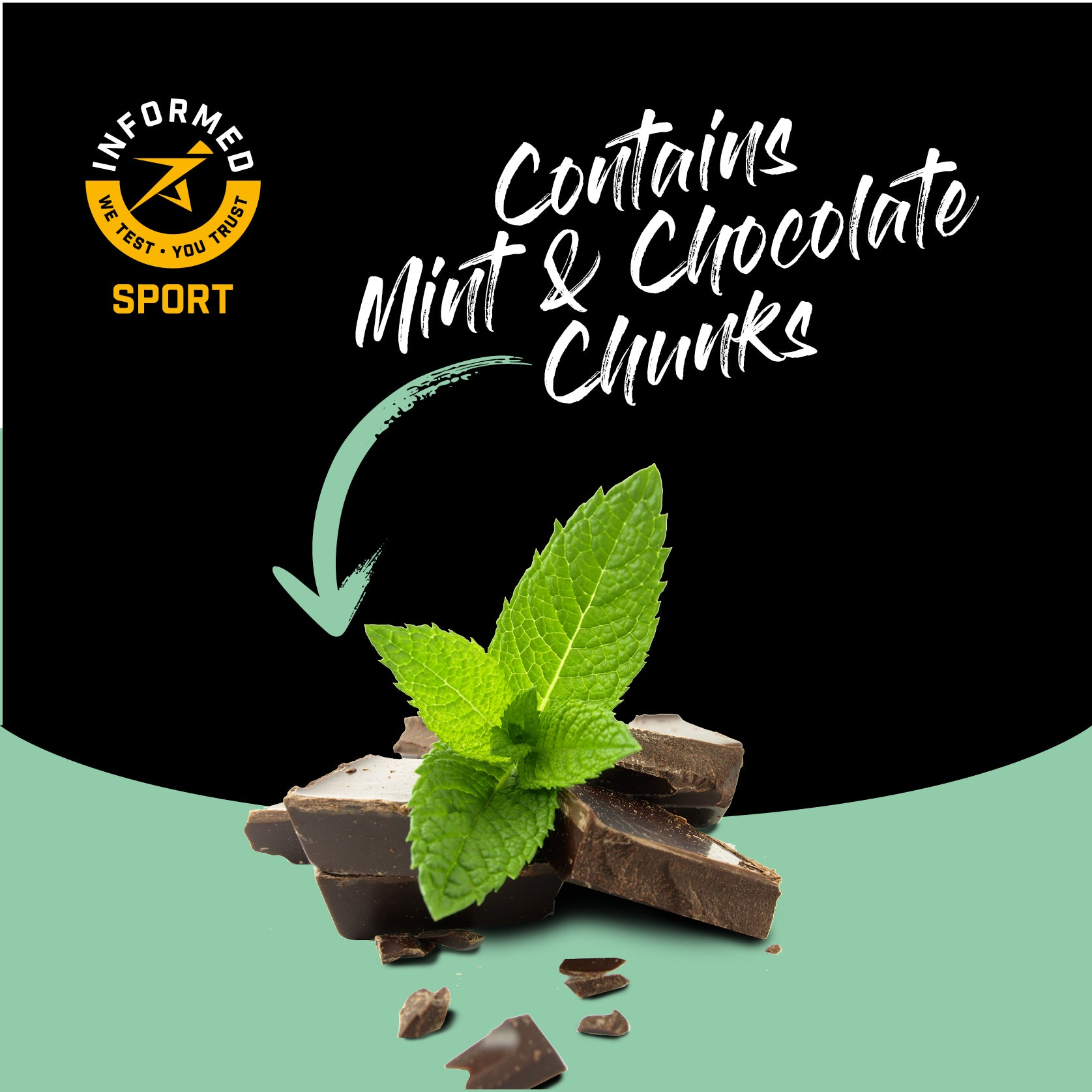 Mint Chocolate, Nut and Gluten Free High Protein Oat Bar 12 Pack