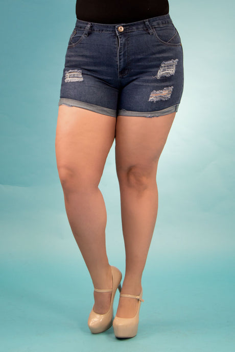 High Rise Destroyed Denim Shorts | 2643 XS