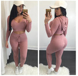 LA Fashion District LLC pink / L cotton two pieces set women club wear clothing  crop tops and pencil pants long sleeve two pieces