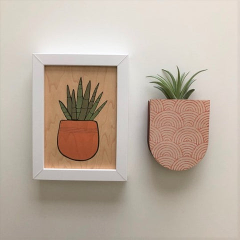 Pocket Wall Planter - Assorted Patterns/Sizes