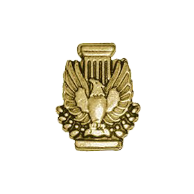AIA Store - Membership Pin (Gold) - n/a