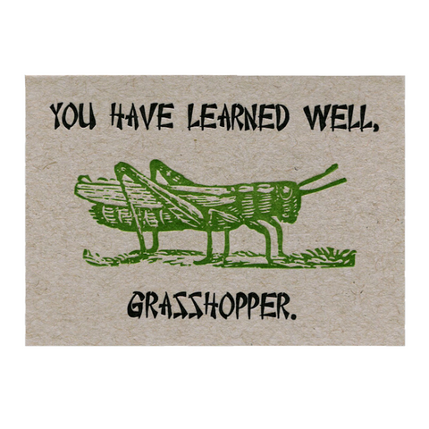 You Have Learned Well, Grasshopper