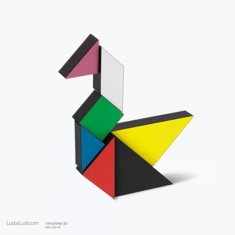 Multi Color 3D Tangram