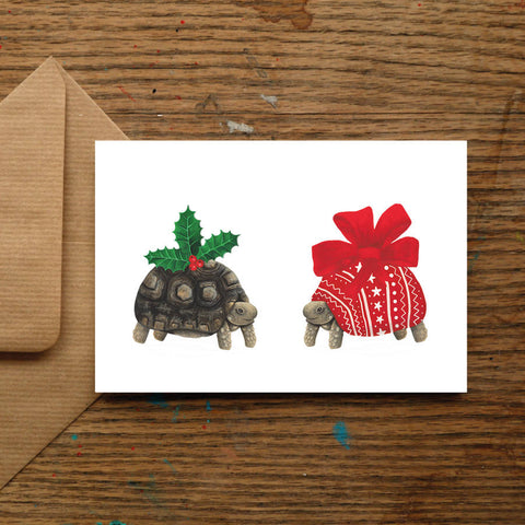 Holiday Tortoise
