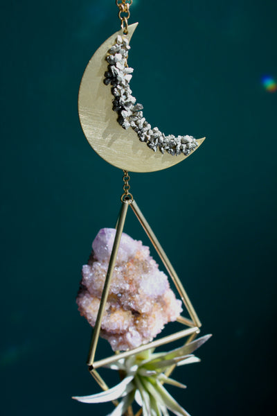 Celestial Crystal Plant Hanger with Cactus Amethyst