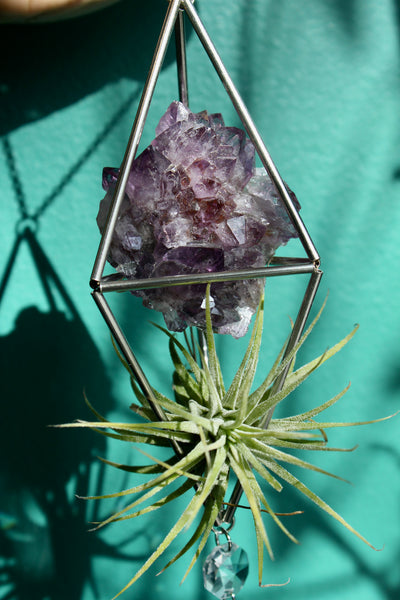 Amethyst Stained Glass Sun Catcher with Air Plant
