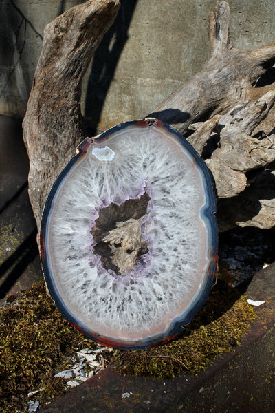 White Agate Slice with Purple Center