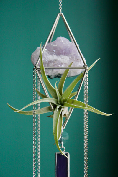 Amethyst Sun Catcher Chandelier with Air Plant