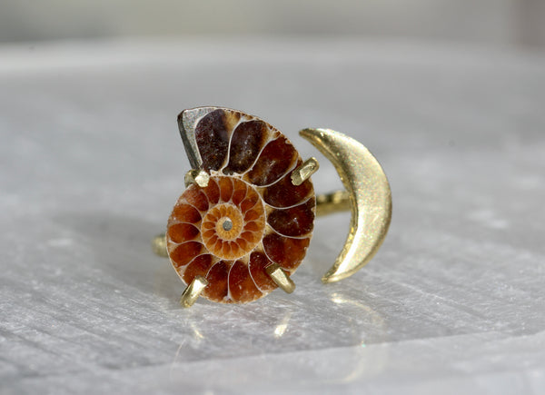 Ammonite Fossil Moon Ring