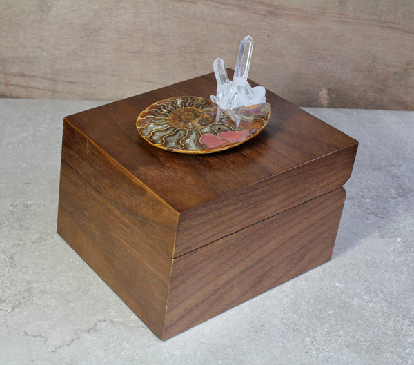 Ammonite Quartz Walnut Jewelry Box