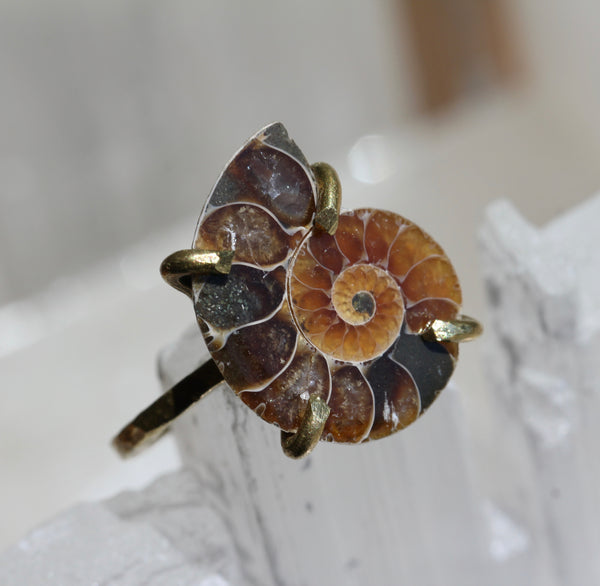 Ammonite Fossil Brass Ring