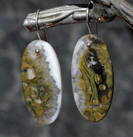 Ocean Jasper Oval Drop Earrings