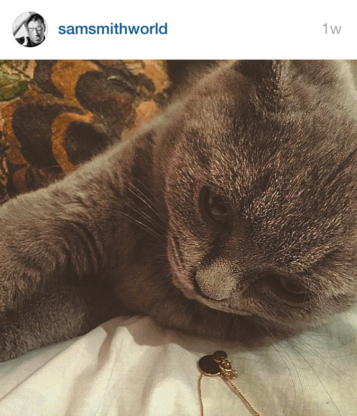 Sam Smith's Cat Henry and The Laura Lee Jewellery Initial Coin Necklace