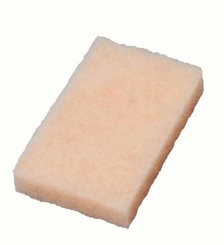 Bug Scrubber Pads - Real Clean Products