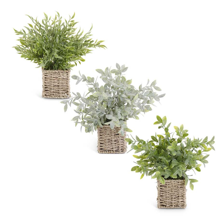 "12"" Herbs in Woven Baskets"