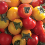 1.5'' Mixed Color Mini Tomatoes (2 Boxes of 30)