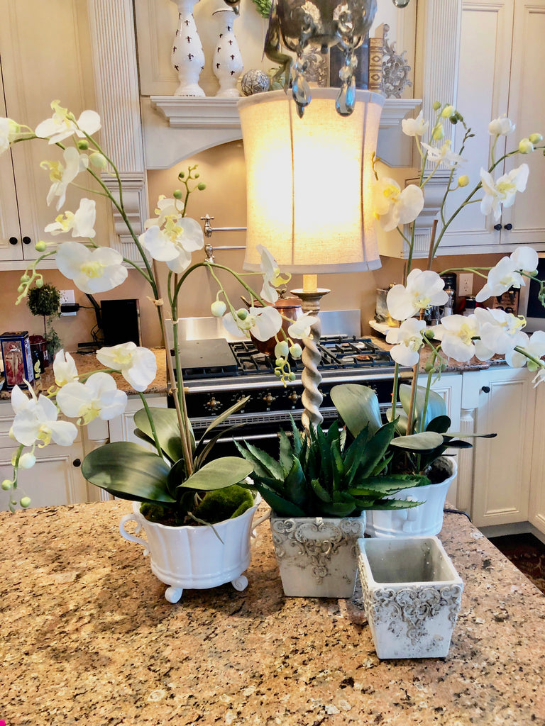 Set of 2 White Orchids in Ceramic Vases