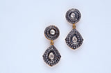 Exotic Teardrop Earrings