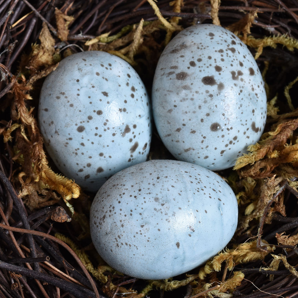 Set of 2 Bird Nests with Blue Eggs
