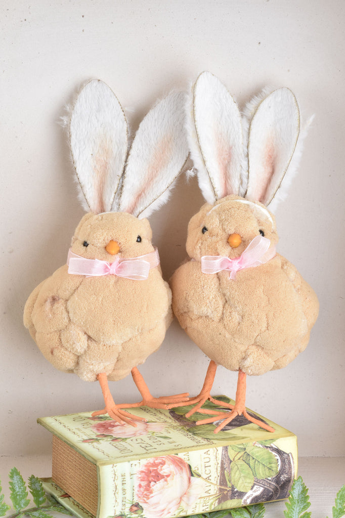 Fluffy Chicks with Rabbit Ears
