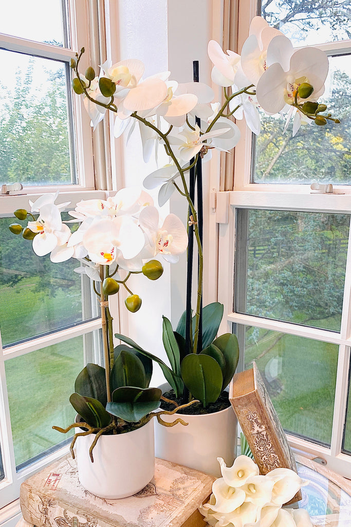 Real Touch Potted Orchid